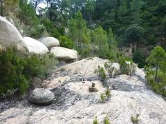 Entre la vasque initiale du Finicione et la confluence Quercitella : des cairns en RG
