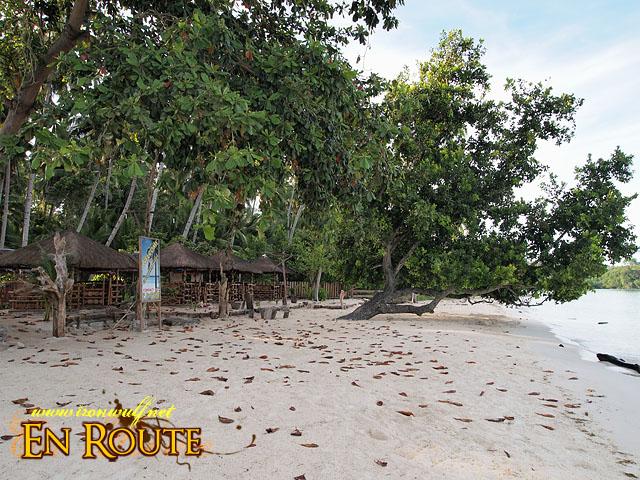 Coco Beach Resort beach front