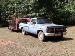 074 (stevenbr549) Tags: old blue chevrolet truck work cow cattle farm stock chevy trailer c20 1979 gooseneck