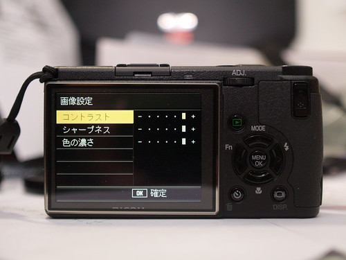 P1289580.JPG