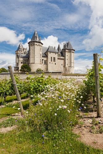 The Castle at Saumur on Flickr