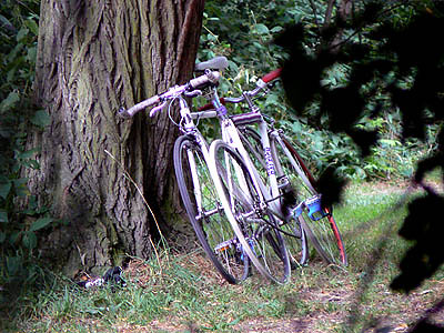 vélos à Hampstead Heath.jpg