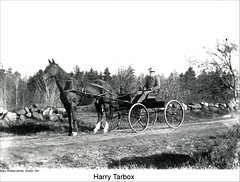 Horse and Buggy in Dublin New Hampshire (Keene and Cheshire County (NH) Historical Photos) Tags: horse harness horseandcarriage horseandbuggy dublinnh standardbred dublinnewhampshire harrytarbox maryerobbe