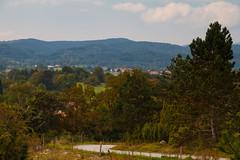 Path to the village (Karmen Smolnikar) Tags: trees village path hills slovenia slovenija karst zeje eje