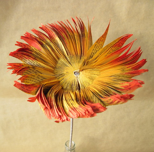 Red and Yellow Book Art Flower