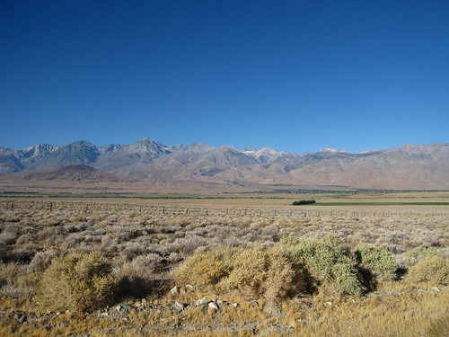 Easter Sierra View from Owens Valley