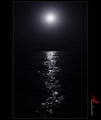 كيف حالك ؟ [ Explore ] (ANOODONNA) Tags: sun black water canonef2470mmf28lusm فلسفه canoneos50d anoodonna العنودالرشيد alanoodalrasheed