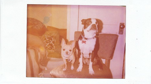 expired captiva instant film- test shot of floyd & ivan