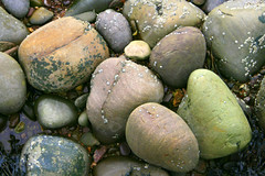 Stoned (mind the goat) Tags: beach rock stone pebble worn weathered washed