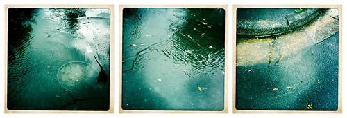 Rainwater triptych.