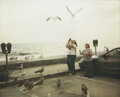 17 miles (Polaroid version)