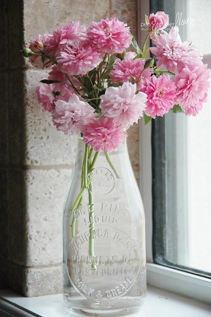 milkbottlepinkflowers5680