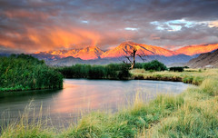Owens River Sunrise (Marc Briggs) Tags: california trees storm tree fall grass clouds river reeds stream sierra cattails deadtree sierranevada bishop easternsierra owensriver chalkbluffroad dsc031801b