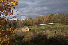 View of our garden October 9th 2010 (MiFleur...Thank You for 1 Million Views) Tags: new children education cit hampshire greenhouse ecovillage internship localfood organicfarm colebrook kheops colebrooknh cologique growfood mifleur newearthorganicfarm