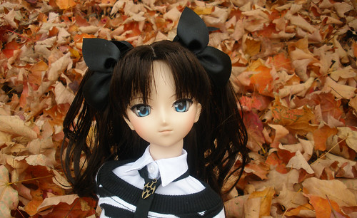 Rin in the leaves