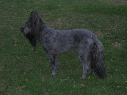 October 2010 036