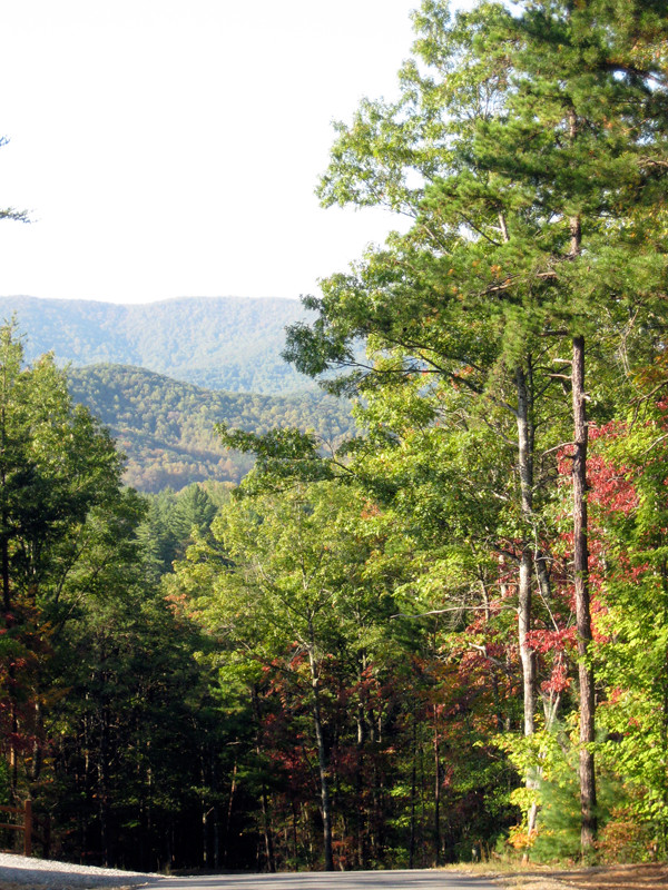 reward-hike
