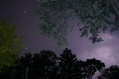 lightning strikes inside my chest to keep me up at night. (breanna) Tags: sky slr rain night nikon purple flash lightning thunder d5000