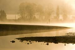 Pitt River Morning 6 (showbizinbc) Tags: mist fog sunrise river golden britishcolumbia mapleridge portcoquitlam pittriver pittmeadows mistymorning