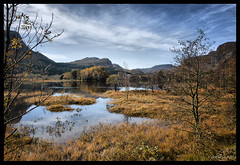 Dressed in Orange (Arnfinn Lie, Norway) Tags: autumn nature water norway rogaland carlzeiss1680mm alpha350 magicunicornverybest magicunicornmasterpiece mygearandmepremium arnfinnlie carlzeisslover ginordic1