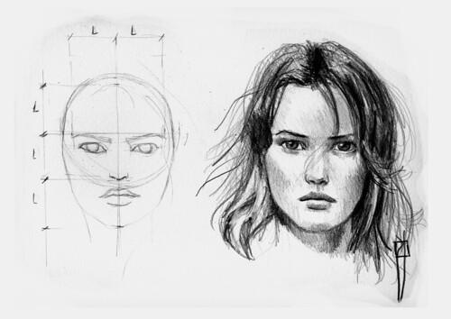 woman face proporcions