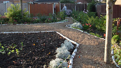 Three Trees Community Garden - October 2010 (Lenton Sands) Tags: