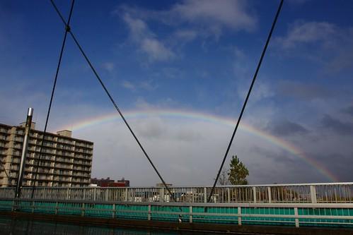 橋から見上げた虹の架け橋
