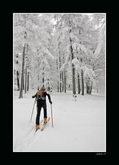 """Urkiagako basoa (innaakki) Tags: enero adi 2010 esquí adarra travesía pirineoak urtarrila urkiaga """"mendiko eskia"""""""