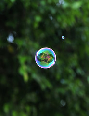 The Green Planet inside the Bubble _HXT2515 (ohmytrip) Tags: macro reflection green ecology reflections garden circle soap environmental bubbles round bubble planet environment burst explode environmentalist ecological popping environmentalprotection ecologicalprotection