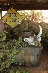 20101024_7188 (laurel@saruchan.net) Tags: ranch arizona sign architecture skull oracle high crossing stock woodstove jinks