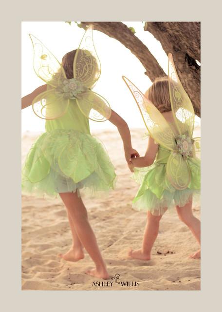 Fairy-Twins