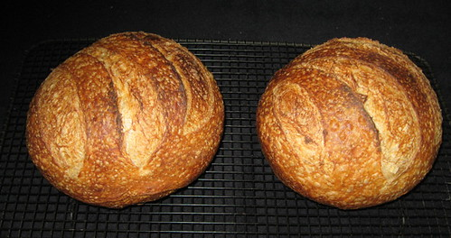 Artisan Bread Baked Using Nopreheat Method