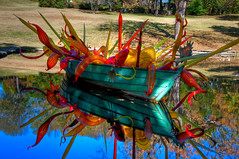 Contrasting Installation (Jeff.Hamm.Photography) Tags: sculpture reflection chihuly art water glass pool garden boat nikon tn nashville tennessee installation nikkor botanicalgarden dalechihuly hdr lightroom photomatix f3556 18105mm cheekwoodbotanicalgarden dishippy