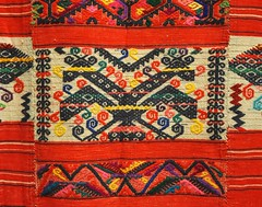 Huipil Oaxaca Mexico (Teyacapan) Tags: birds mexico clothing mexican pajaros textiles weaving garments huipil tejidos chinantec