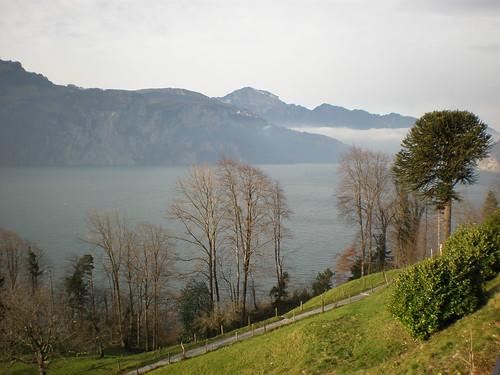 Vierwaldstätter See / Wilhelm Tell