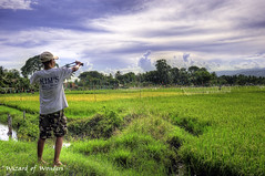 This is the Philippines #7 - Keeping the Birds at Bay (Wizard of Wonders™) Tags: canada man nature clouds landscapes stream bc rice wildlife philippines scarecrow cebu paddyfields catapult ricemill wizardofwonders paulwsharpe kimsricemill