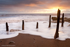 l  l  l  l | l (Azzmataz) Tags: county sea sun sunrise durham posts groynes seaham anthonyhallphotography