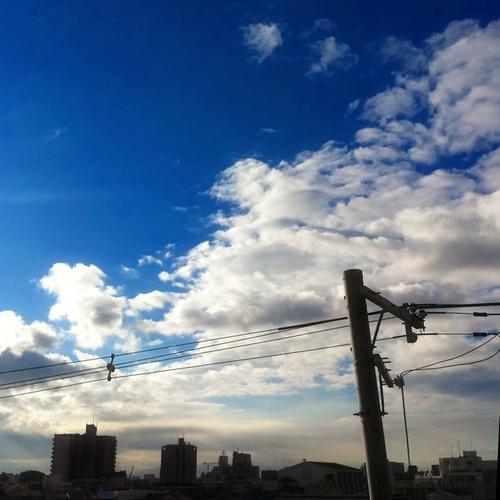 今日の写真 No.83 – 昨日Instagramに投稿した写真(4枚)/iPhone4 + Photo fx