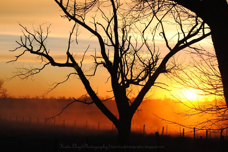 Sunrise-in-Iowa-7