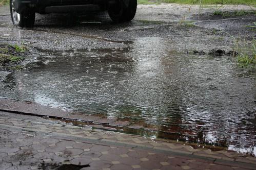 Day 333 - Wet