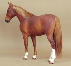 Cavalry horse - sorrel (Nohuanda Equine Art) Tags: sorrel 16scale nohuanda cavalryhorse cesardubon