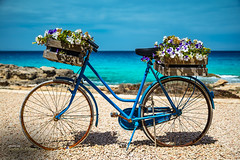 The flowers bicycle (Oddiseis) Tags: formentera balearicislands spain escalódesantagustí coast litoral sea mediterranean flowers bicycle vehicles blue colors clouds sunny summer old rural rusty rocks beach tamron247028