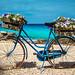 The flowers bicycle (Oddiseis) Tags: formentera balearicislands spain escalódesantagustí coast litoral sea mediterranean flowers bicycle vehicles blue colors clouds sunny summer old rural rusty rocks beach tamron247028