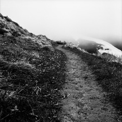 One small step at a time (Nobusuma) Tags: hasselblad hasselblad500cm zeissplanar 80mm f28 ilford ilforddelta 100iso caffenolcm caffenol selfdeveloped developedathome film analog italia italy appennini path hiking mountains snow monochrome homemadesoup