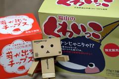 くわい (ikdk) Tags: fukuyama danboard ダンボー