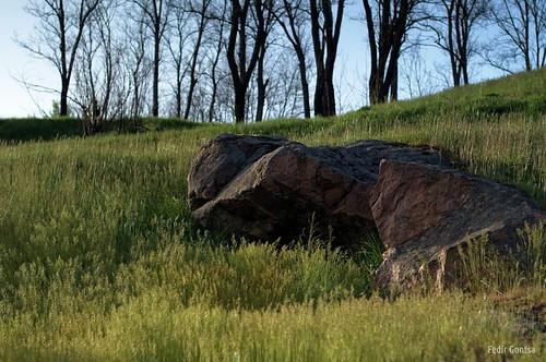Grass rock