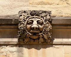 Green Man | Carved corbel | Magdalen College | Oxford | April 2017-54 (Paul Dykes) Tags: oxfordshire oxford england uk april 2017 universityofoxford oxforduniversity magdalencollege grotesque carving sculpture greenman
