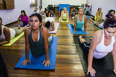 Yoga -a prática da mente e do Corpo