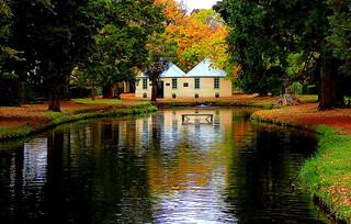 Autumn colours  at SALMON PONDS