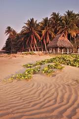 Playa Esteron (Travicted Photography) Tags: travel centralamerica centroamerica elsalvador elcuco playaesteron beach playa sea mar sand palmtree